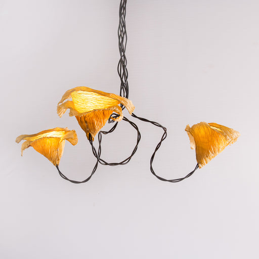Dry Flower Pendant Lamp