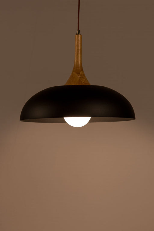 Aiden Pendant Lamp (Black & Black)