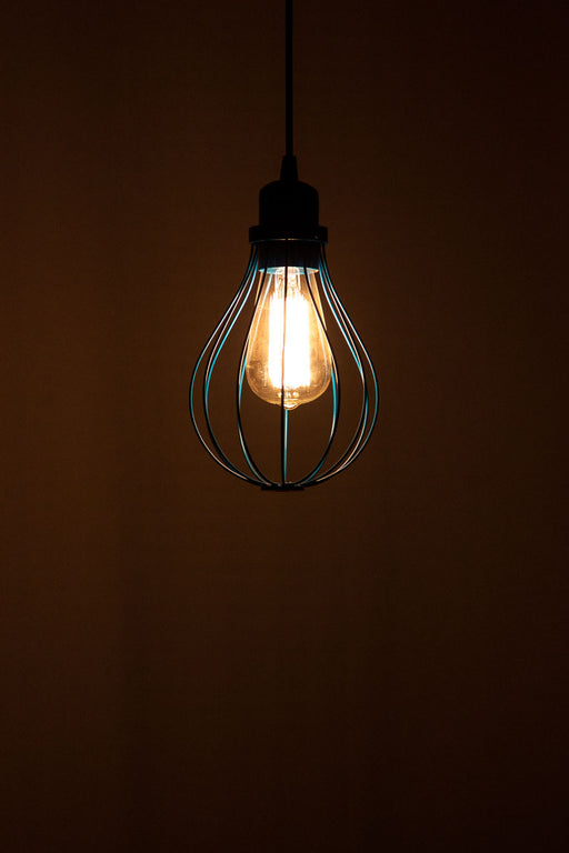 Bulb Wire Pendant Lamp