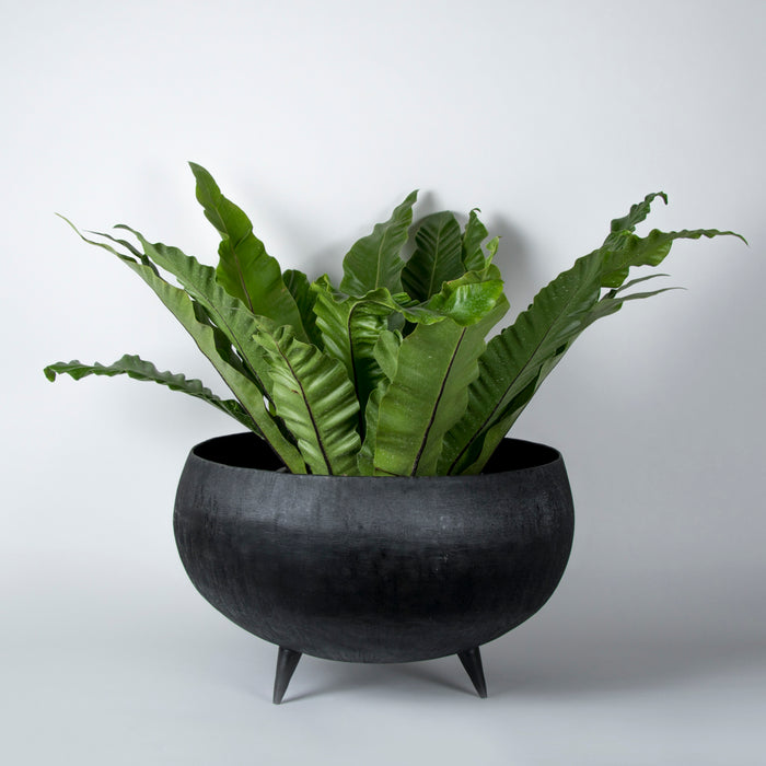 Mink Planter (Black)