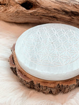 Flower Of Life Selenite Incense Holder