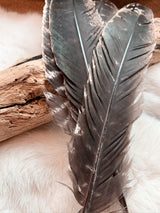Smudging Feather