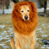 Image of Lion Mane Wig for Large Dogs