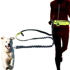 TheHomeFace Handsfree Pouch Dog Leash ™