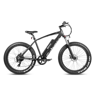 2021 Eahora XC200 E-PAS | Mountain Electric Bike