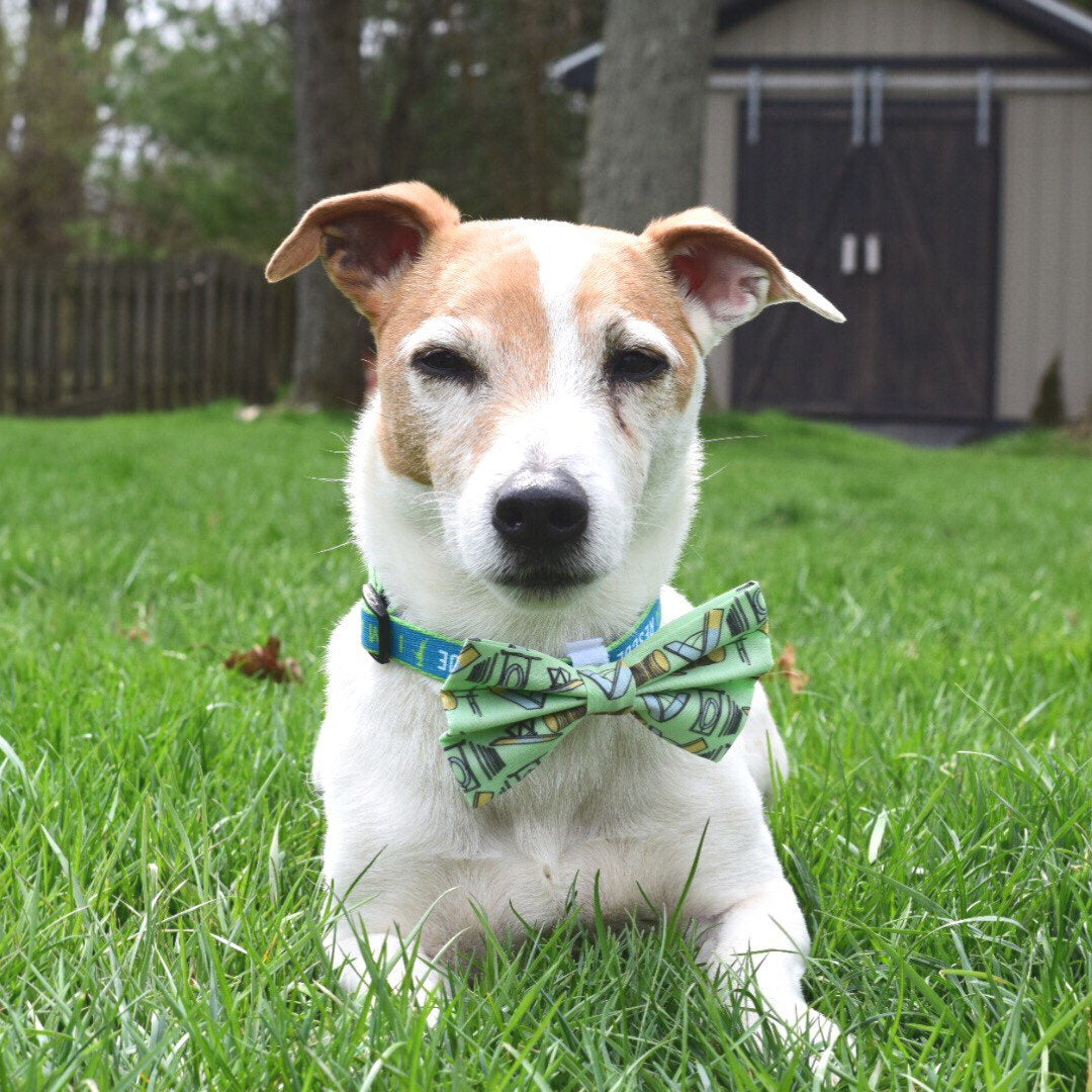 Green agility equipment bow tie