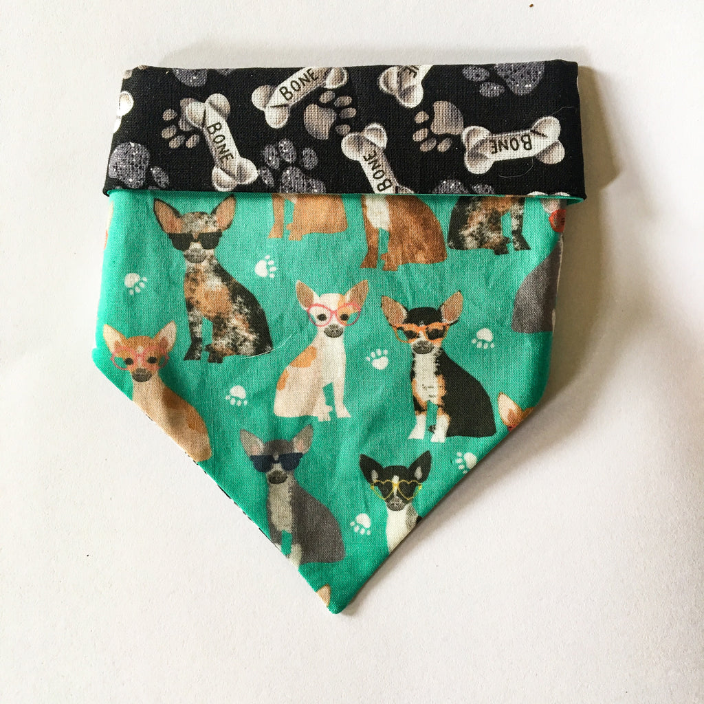 Chihuahuas and glasses breed bandana