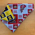 A House Divided- Ohio State/ Michigan Bandana