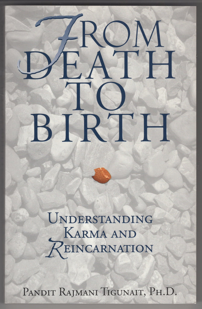 From Death to Birth: Understanding Karma and Reincarnation by Pandit Raj Tigunai