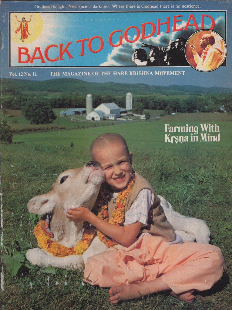 Rare Back To Godhead Hare Krishna Magazine Vol 12 No 11 1977