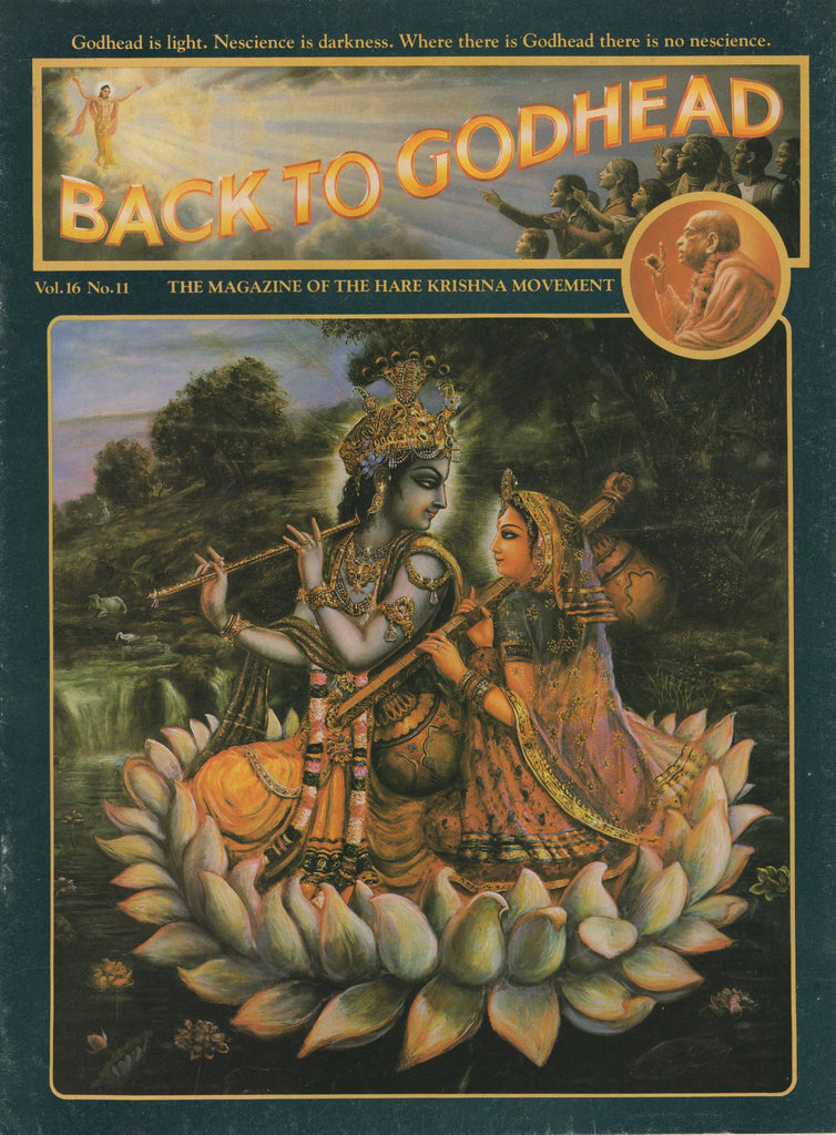 Back to Godhead Hare Krishna Magazine 1981 Vol. 16, No.11