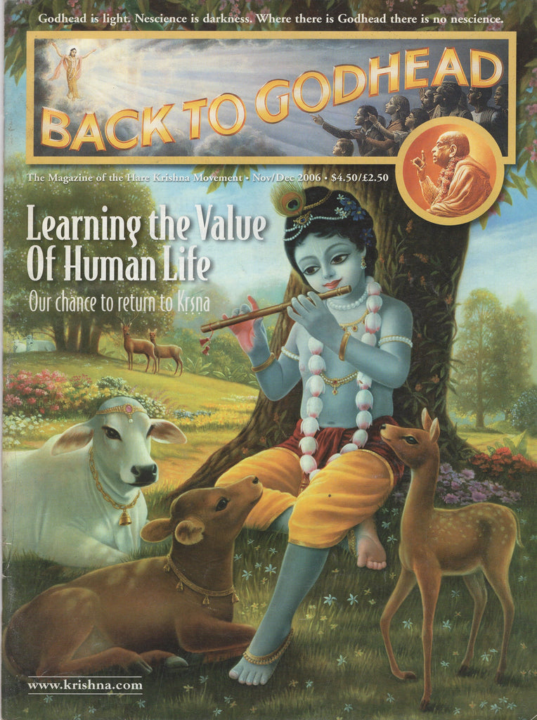 Back To Godhead Hare Krishna Magazine Learning The Value Of Human Life Nov/Dec