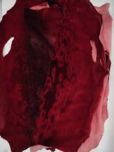 Load image into Gallery viewer, Ringed Seal Red - Dressed Fur Skin - Fur | STAMPE PELS