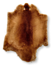 Load image into Gallery viewer, Beaver Sheared Honnie - Dressed Fur Skin - Fur | STAMPE PELS