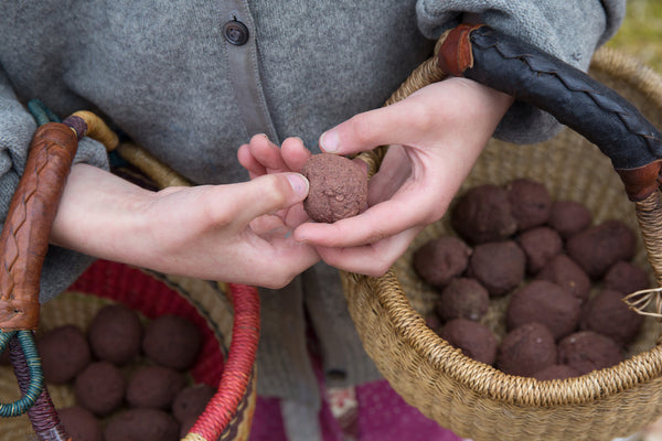 Taproot at Home :: Seed Bombs