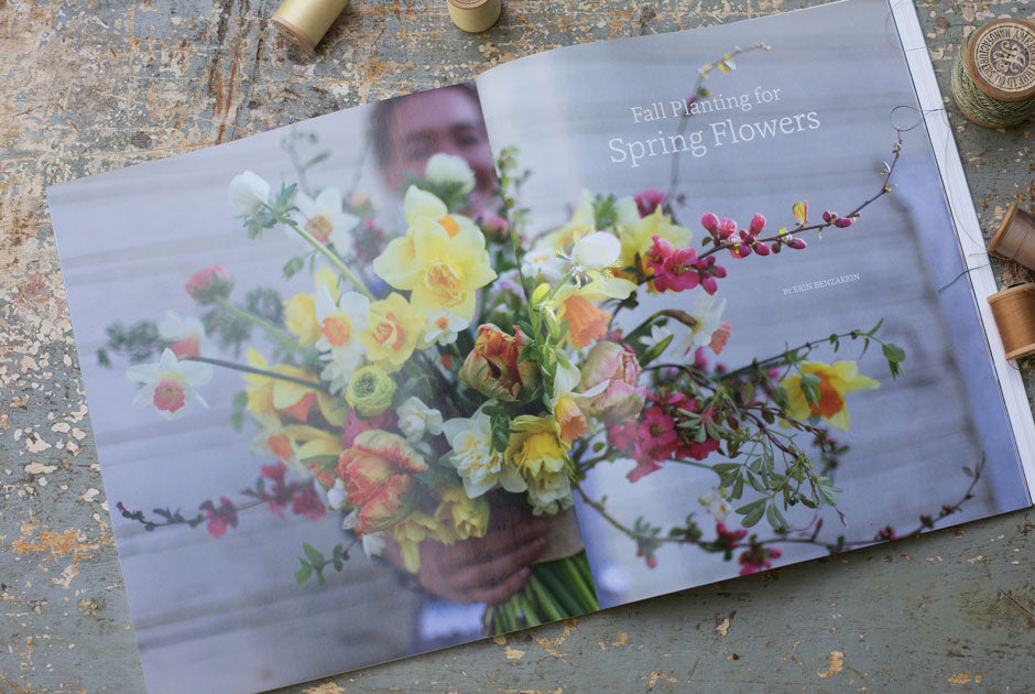 MEND-Fall-Planning-Spring-Flowers