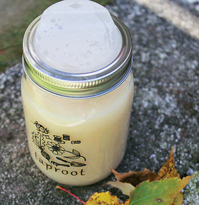 Taproot Travel Jar