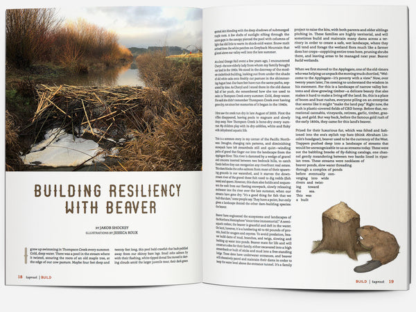 Issue 35::BUILD