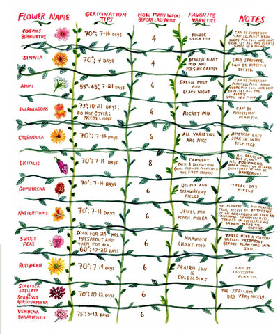 Flower Planting Guide by Phoebe Wahl