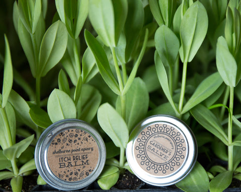 Gardener's Salve & Itch Relief Balm Set