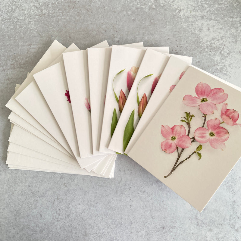 Pink Flowers of Spring Card Set