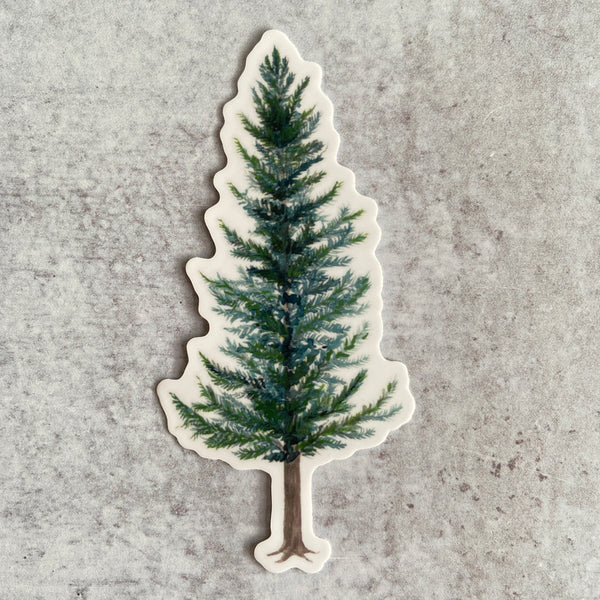 Sticker - Evergreen Tree