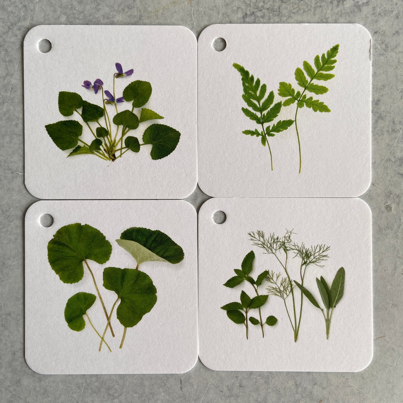 Gift Tags - Ferns and Foliage