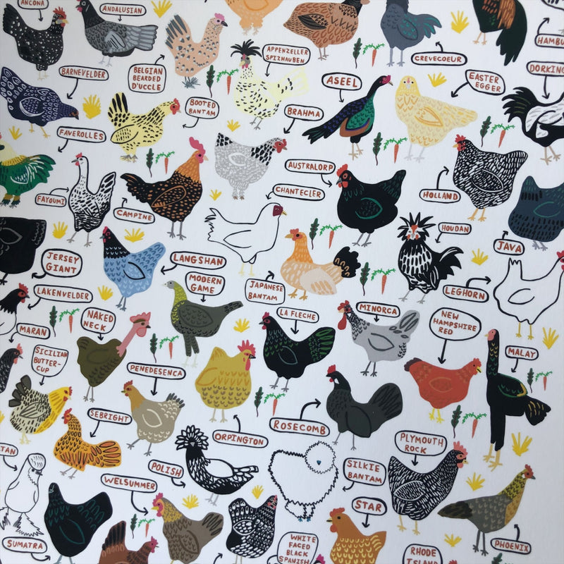 Chicken Breeds - Print