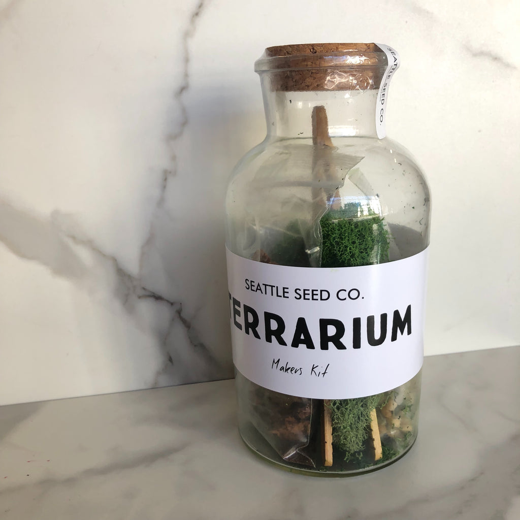 Diy Terrarium Kit Taproot Magazine