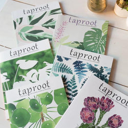 Taproot Magazine Year 8 Collection