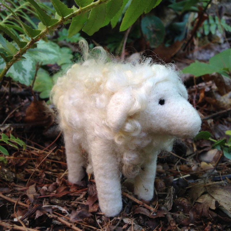 Needle Felting Kit: Border Leicester Sheep