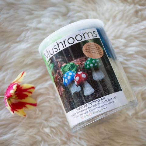 Needle Felting Kit: Mushroom (Red/Blue/Green)