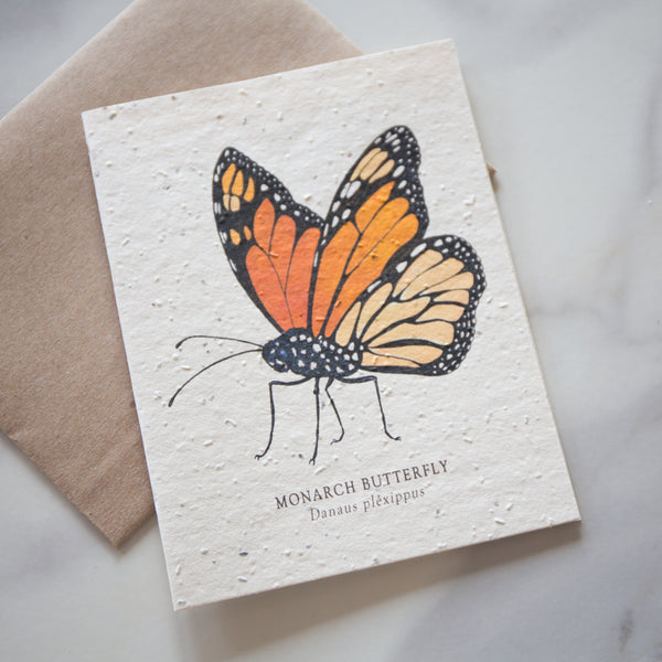 Plantable Seed Paper Cards