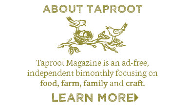 About Taproot Magazine