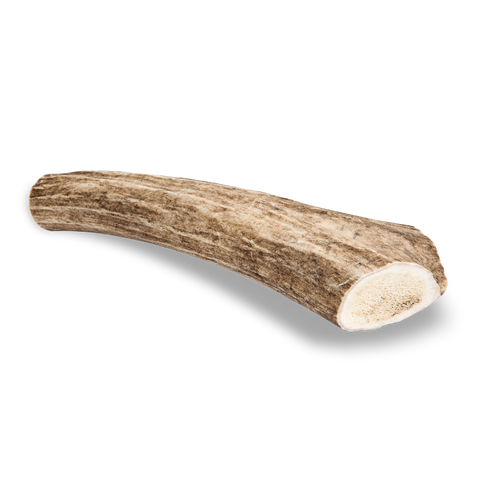 Antler Chew Deer - Large