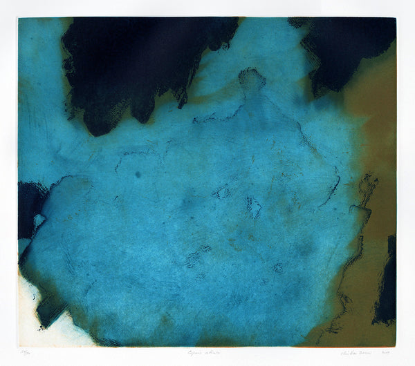Christian Bozon - Espacio Abierto - color aquatint - aqua teal - abstract pool