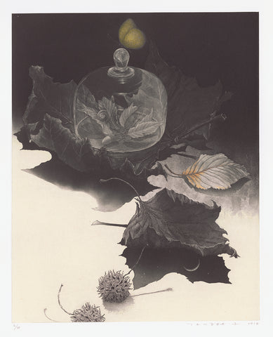 Fumiko Takeda - 武田 史子 - The Poetry of Leaf - 木ノ葉の詩  - intaglio etching aquatint - snail leaves bell jar