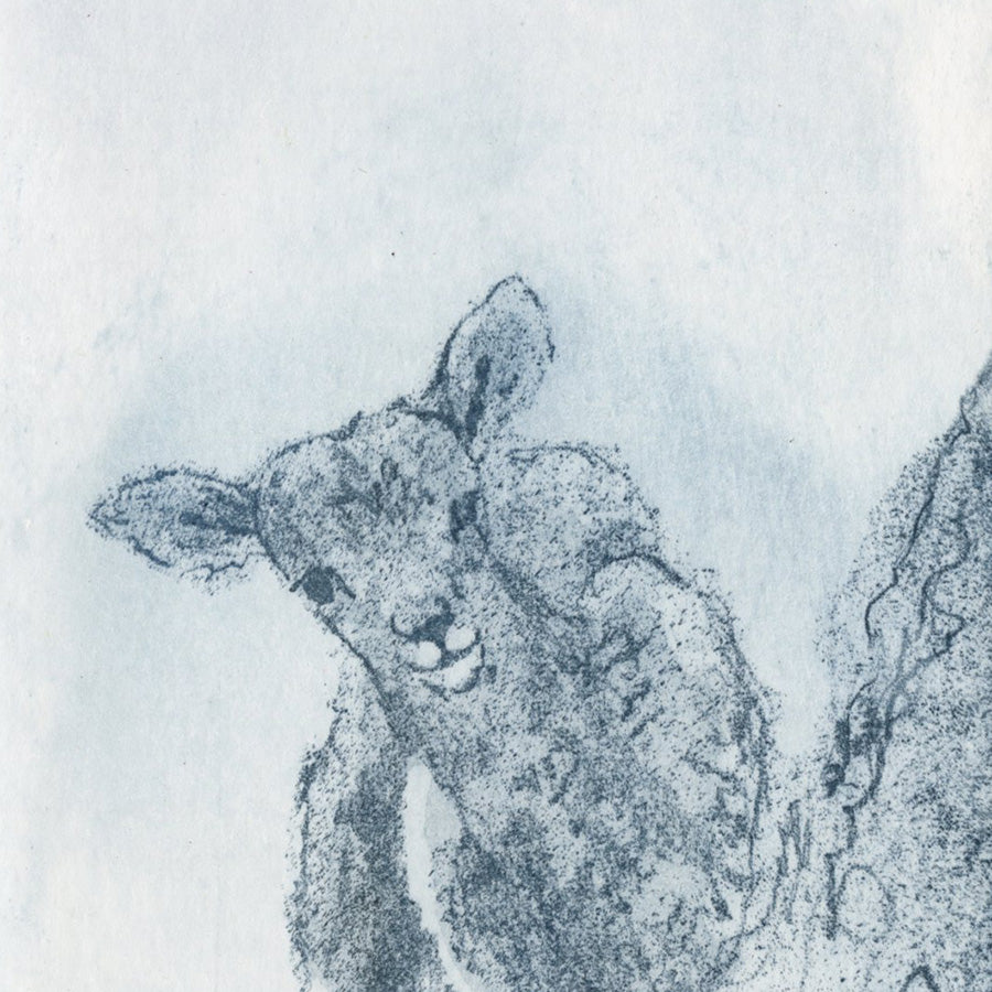 Anna Jeretic - Agneau Sauvage - Wild Lamb - blue ink - detail