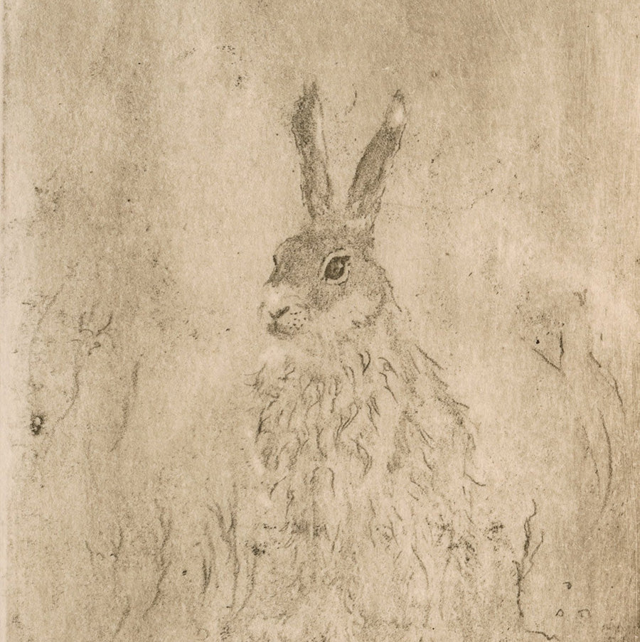 Anna Jeretic - Hare - Lievre - gray on tan - 22of30 - detail