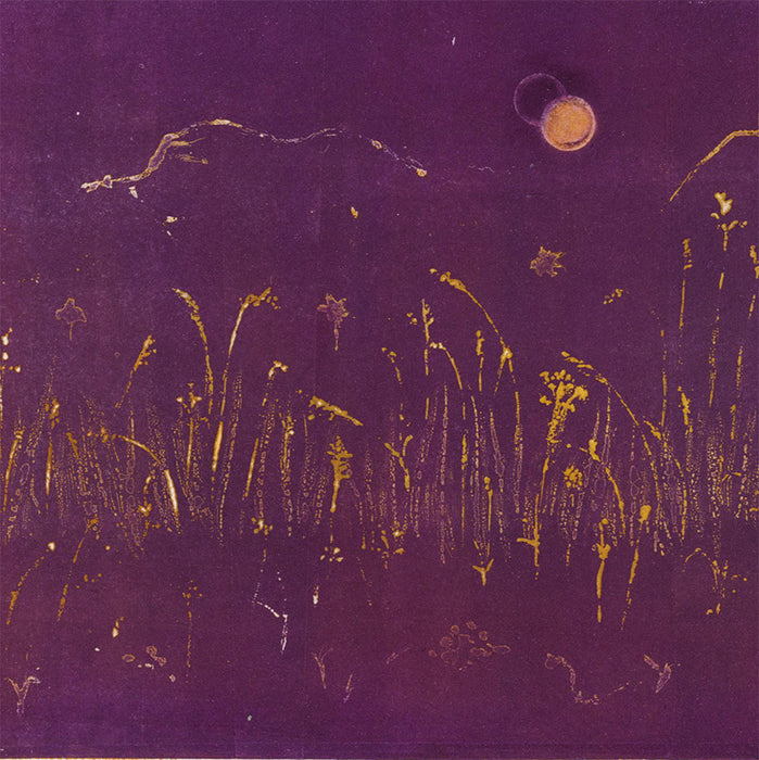 Anna Jeretic - Herbes Illuminees - Illuminated Grasses - detail