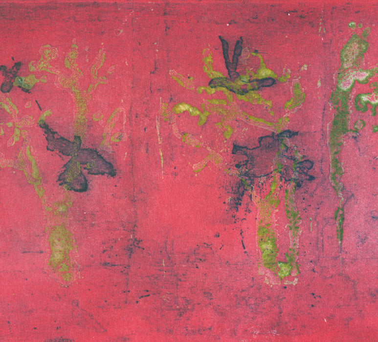 Anna Jeretic - Avenue de l Observatoire - birds and street - pink yellow - sugarlift aquatint