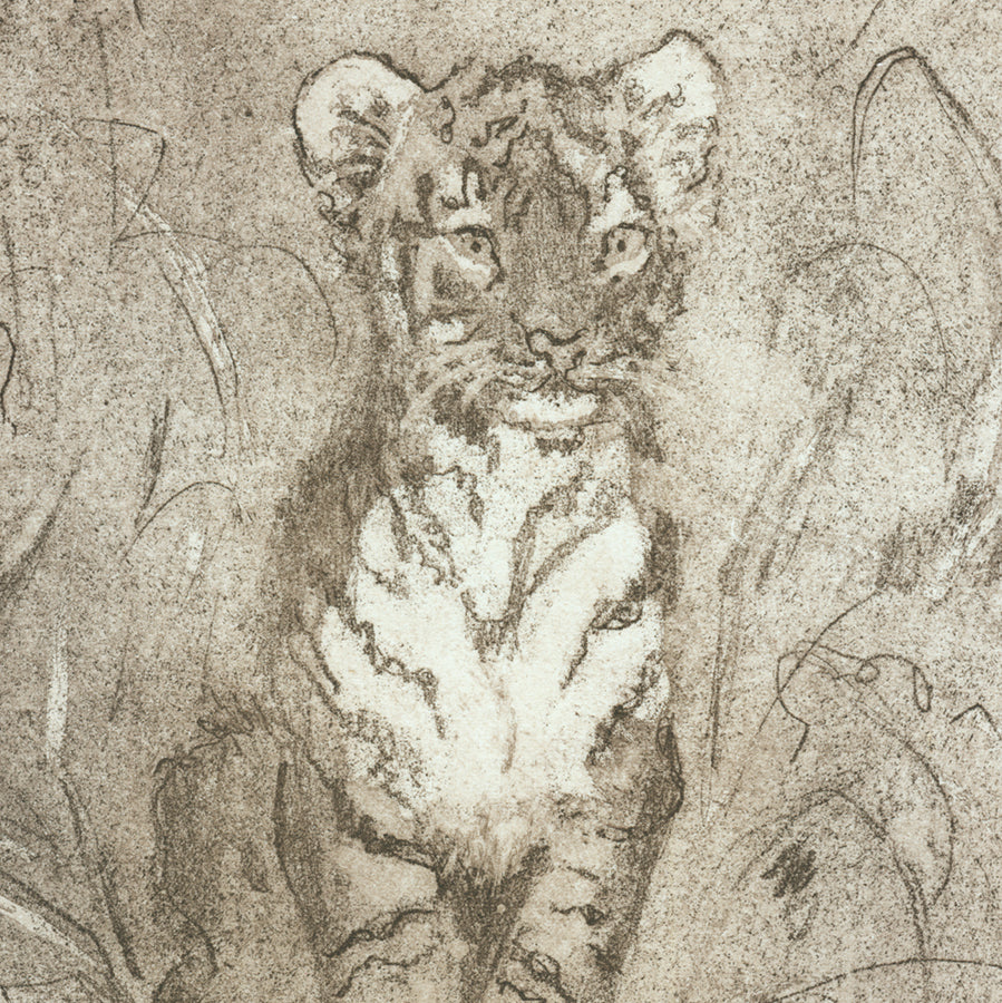 Anna Jeretic - Baby Tiger - Bebe Tigre - aquatint etching - 2018