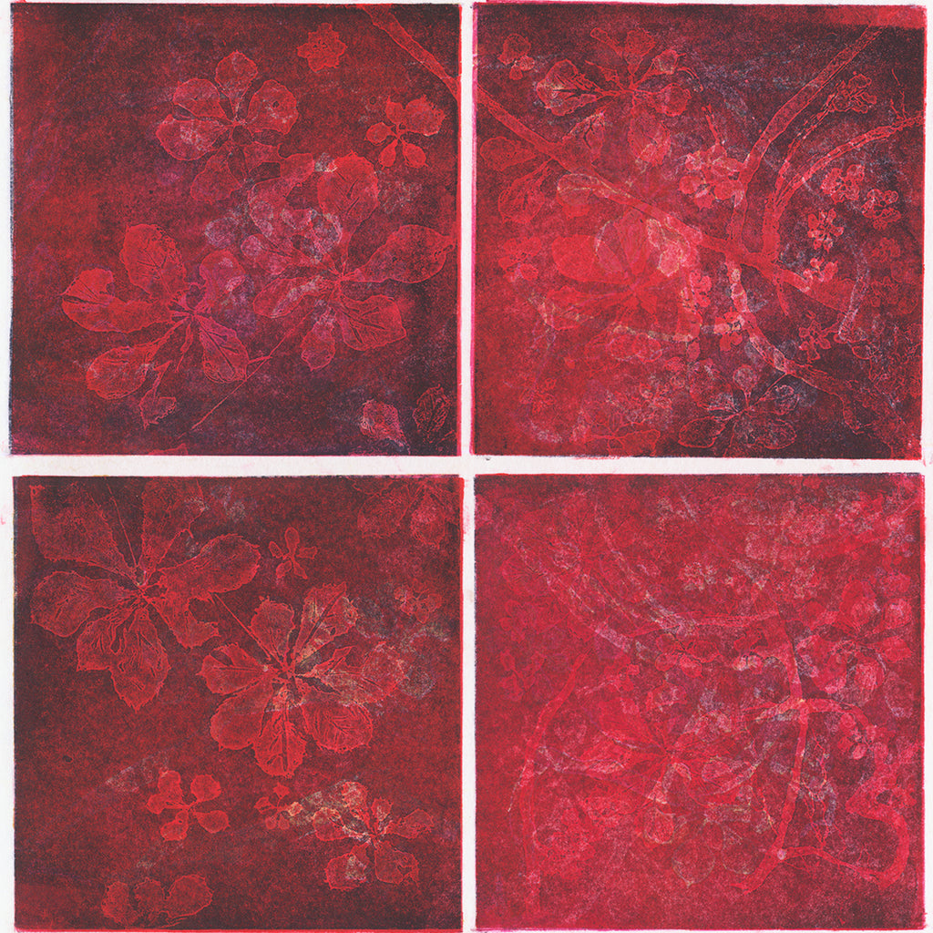 Anna Jeretic - Chestnut Leaves - red blue purple - 11 - sugarlift aquatint