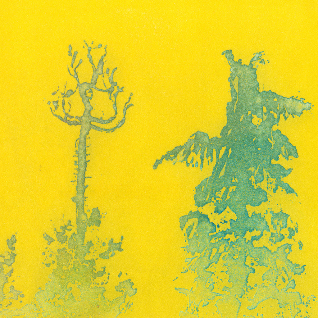 Anna Jeretic - Pine Tree Tops - green - yellow - Sugar-lift aquatint