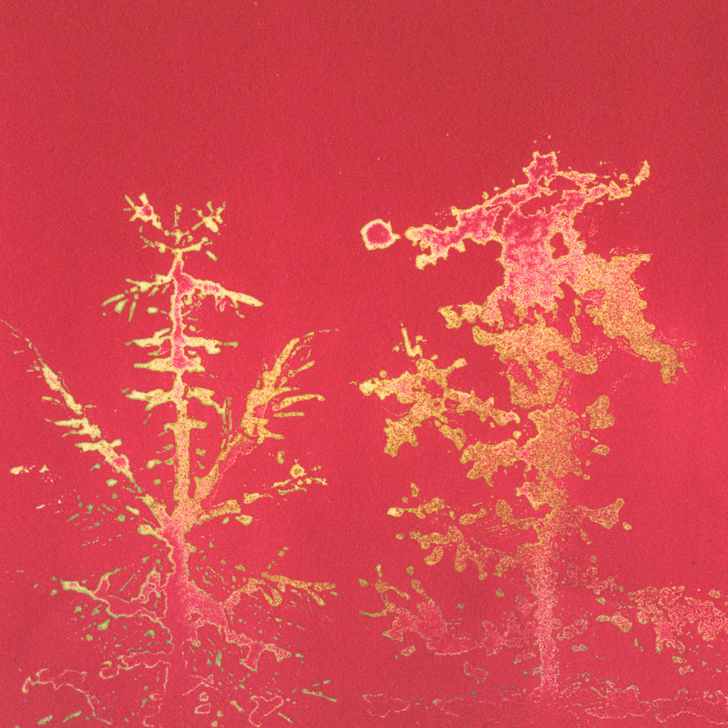 Anna Jeretic - Pine Tree Tops - red - yellow - Sugar-lift aquatint