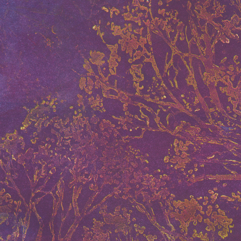 Anna Jeretic - Trees Against the Sky - purple - sugarlift aquatint