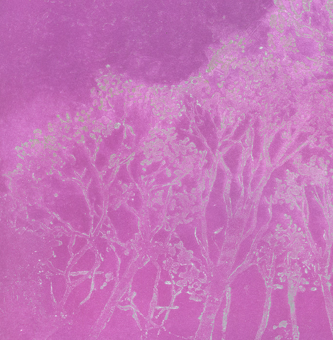 Anna Jeretic - Trees against the sky - sugarlift aquatint - pink silver trees