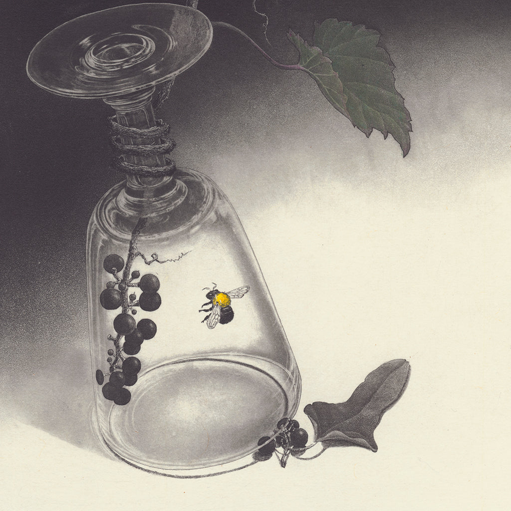 Fumiko Takeda - 武田 史子 - Secret droplet - 秘密の雫  - intaglio etching aquatint - ivy glass bee