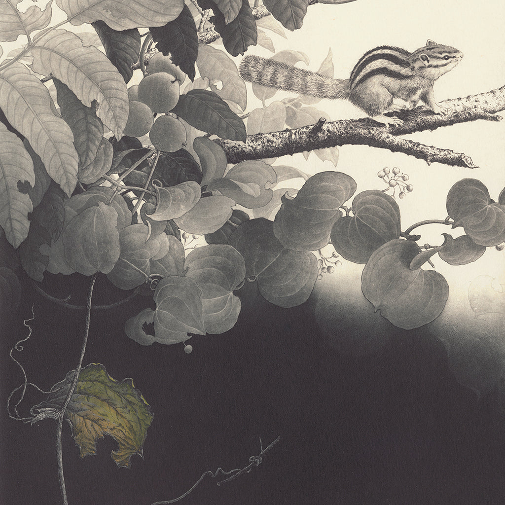 Fumiko Takeda - 武田 史子 - Temptation - 誘い  - intaglio etching aquatint - chipmunk tree