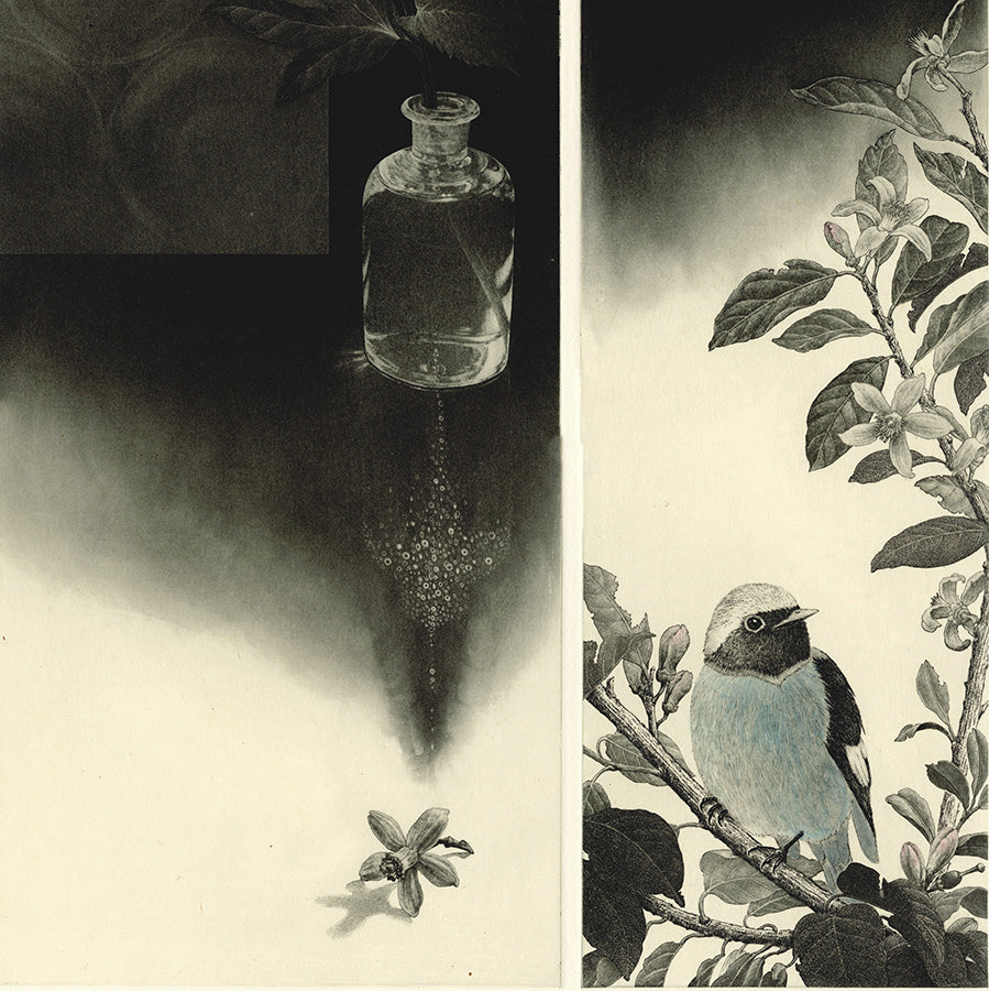 Fumiko Takeda - The Smell of Rain - 雨の匂い - finch - bottle with etching acid